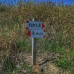 Bicycl-e Rome From Rome to Fiumicino Bike Tour